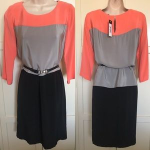 BCBG MaxAzria Mara Color block dress S